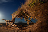 Praia do Prea, Cruz, Ceara, 5866.jpg