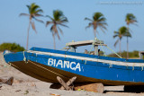 Praia do Prea, Cruz, Ceara, 5919.jpg