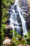 Parque Nacional de Itatiaia, Rio de Janeiro_0672.jpg