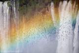 Cataratas do Iguaçu, Foz do Iguacu, PR 9711