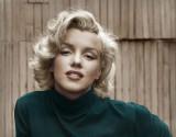 Monroe_1_cxsm.jpg