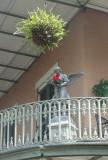 Angel on Balcony in French Quarter.JPG