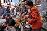 Shanghai - Selling chickens; popular market
