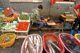 Shanghai - Fish Market