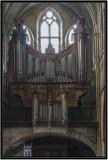 07 Organ D3018145.jpg