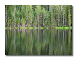 Fern Lake Reflection