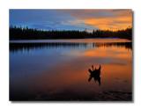 Bierstadt Lake Sunrise