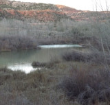 Dawn over Kanab River