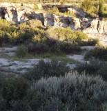 Travertine Pool Walls