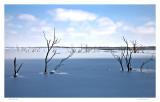 Shadow on the Eldorado Lake
