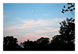 Full moon,  morning sky