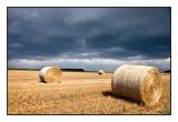 Wheat straw bales,-Smoky Hills, KS