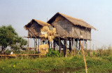 House on stilts