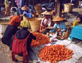 Tomato sellers, Aungban
