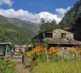 Himal Pani