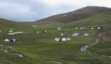 Yartsagumba camp