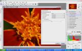 CaptureNX D200.jpg