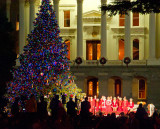 Christmas Tree Lighting Ceremony 2011