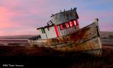 Point Reyes 2012