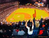 Go Giants !