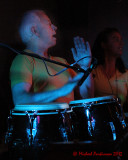 Samba Maracuja 3435 copy.jpg