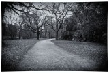 Castlemaine gardens black and white.jpg