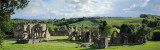 20110513 - Easby Abbey