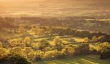 20110531 - Fields of Sunshine