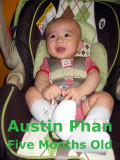 2011 - Austin Phan - Five Months Old - Album 2