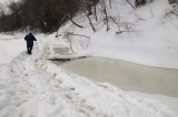 sub gal. Momo walking in the snow