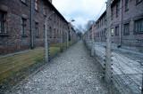 double camp fences