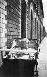 Me in pram in Excise Street circa 1949