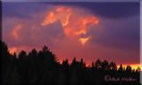 A Sunset In Algonquin Provincial Park