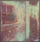 Window Box Bonnieux  (Tri-color gum)