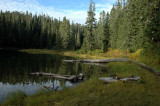 Lake Christine Shoreline