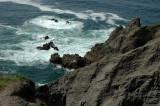 Waves at Rock