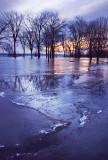 Illinois River morning