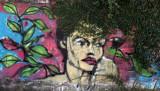 2012_01_25 Graffiti from the Train To Tigre