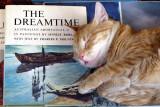 IMG_1308 Dreamtime