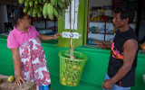 Weighing mangoes. IMG_5277.jpg