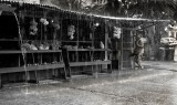 A typical tropical downpour on Pohnpie. A tuna being brought to Ellen's Market. L1018401.jpg