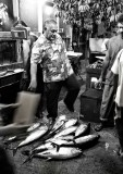 Tuna for sale. L1019957.jpg