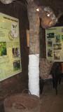 Ylang-Ylang Eco Museum, Mayotte IMG_1007