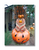Pumpkin Tribe