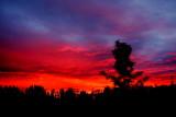 AUG 3 sunset