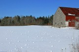 021  SNOWBALLS