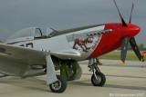 P-51 Red Dog VII