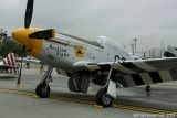 P-51 Section Eight