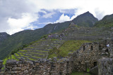 Southern agricultural terraces at Machu Picchu