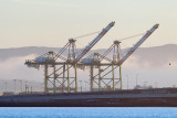 1/26/2012  Container cranes in Oakland